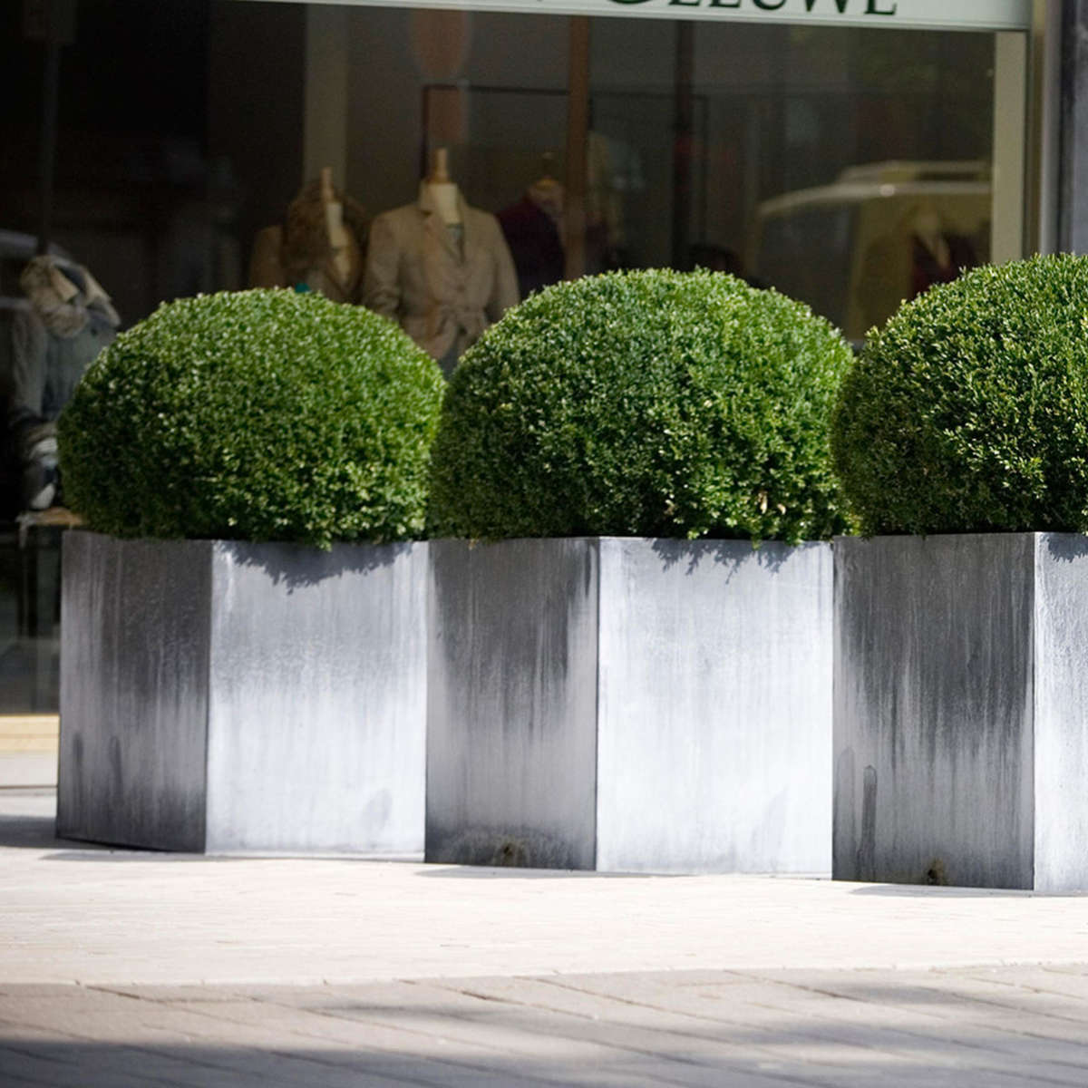 Zinc Cube Pot