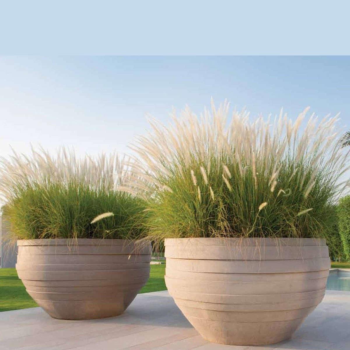 Modern Garden Co Uf Ambient