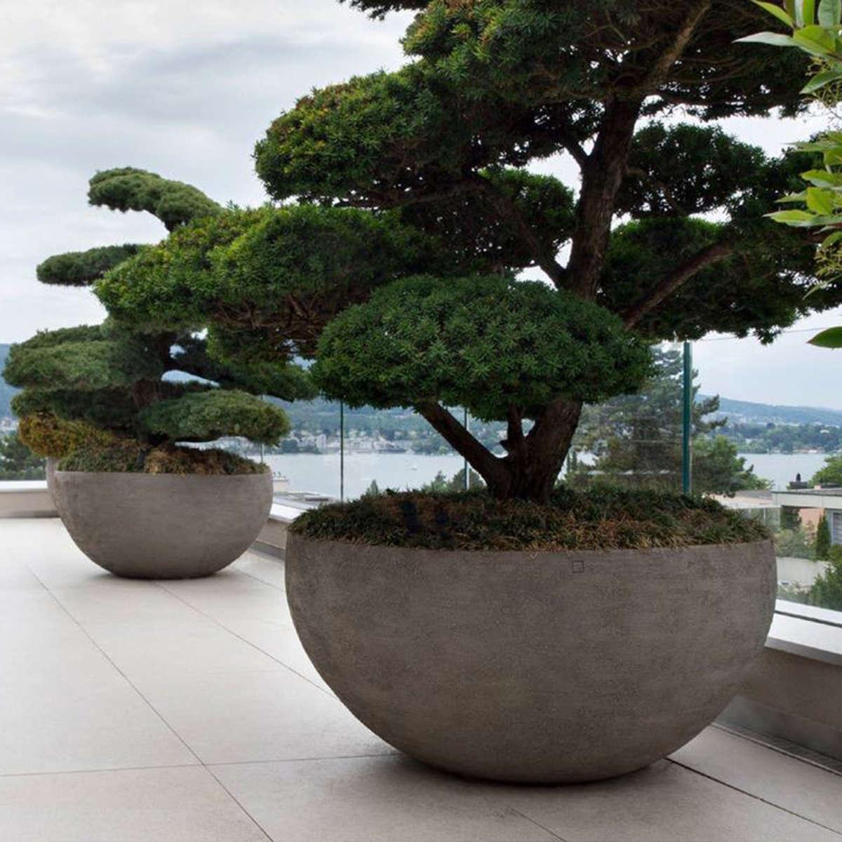 Modern Garden U Container