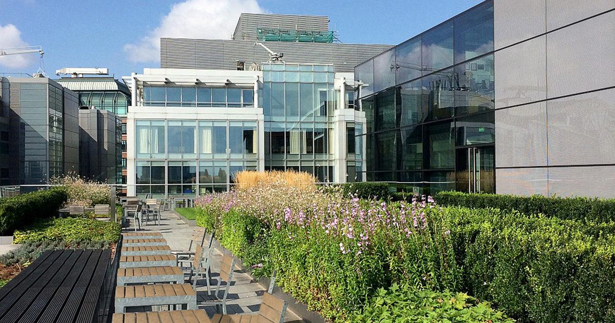 The Modern Garden Company Allen Amp Overy Office